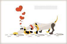 Free Love Dog Stock Photo - 18223460