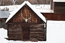 Free Old Barn With Elk Antlers In Winter Royalty Free Stock Images - 18224599
