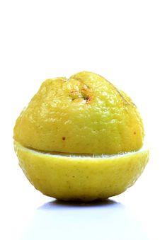 Free Ripe Lemon Stock Photos - 18227543