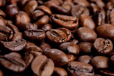 Free Coffee Royalty Free Stock Photography - 18228527
