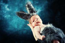 Free Little Rabbit Royalty Free Stock Image - 18228656