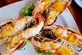 Free Grilled Shrimp Closeup Top View Stock Photo - 18237450