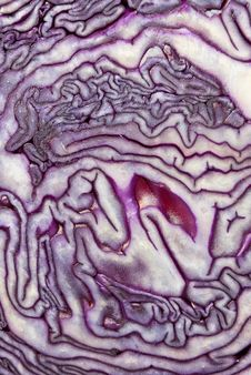 Free Cut Red Cabbage Royalty Free Stock Image - 18232446