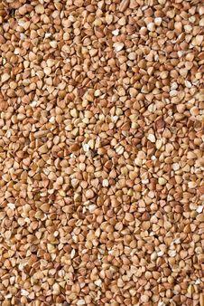 Free Buckwheat Stock Photos - 18232453