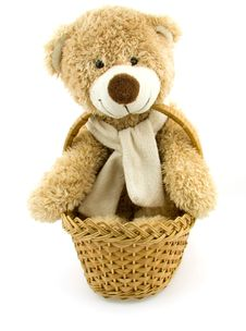 Free Toy Bear In A Small Basket Royalty Free Stock Photos - 18232588