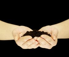 Free Earth In Hands Royalty Free Stock Photos - 18233758