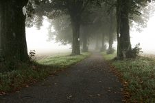 Free Alley In The Mist Stock Photo - 18240410