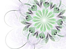Free Abstract Fractal Spring Blossom Stock Photography - 18241272