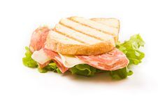 Free Delicious Sausage Cheese Sandwich Royalty Free Stock Photo - 18243675