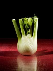 Free Fennel On Red Glasstable Royalty Free Stock Photo - 18244455