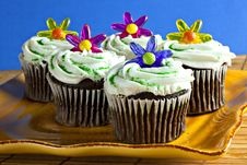 Free Cupcakes With Sprinkles And Plastic Flowers Royalty Free Stock Image - 18246916