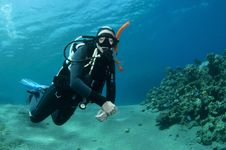 Free Scuba Diver On Coral Reef Royalty Free Stock Image - 18247986