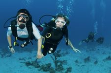 Free Scuba Divers On Coral Reef Royalty Free Stock Photos - 18248038