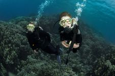 Free Scuba Divers On Coral Reef Royalty Free Stock Photos - 18248058