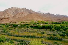 Free Ladakh Mountains And Greenery Stock Photo - 18249340