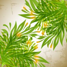 Free Floral Background Stock Photos - 18249343