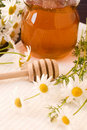 Free Honey And Camomile Royalty Free Stock Photography - 18254147