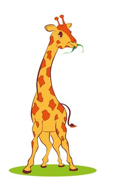 Cute  Giraffe Stock Image