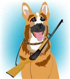 Free Dog With Handgun Stock Photography - 18250632