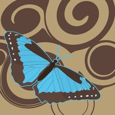 Free Blue Butterfly Royalty Free Stock Image - 18250726