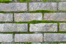 Free Moss Growing On Bricks Royalty Free Stock Photography - 18252867