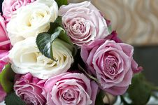 Free Clouse-up Of White Roses Stock Photography - 18255002