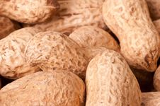 Free Peanuts Macro Picture Royalty Free Stock Photos - 18255308