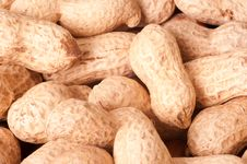 Free Peanuts Macro Picture Royalty Free Stock Photography - 18255407
