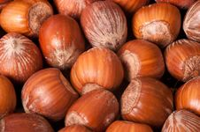Free Macro Picture Of Hazelnuts Royalty Free Stock Images - 18255559