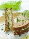 Free Sandwich Stock Images - 18260414