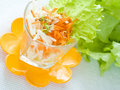 Free Healthy Salad Stock Photography - 18260512