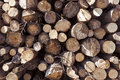 Free Stack Of Logs Royalty Free Stock Photo - 18263185