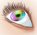 Free Multicolor Human Eye. Stock Photos - 18266093