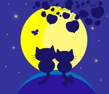Free Enamoured Cats Stock Photo - 18260150