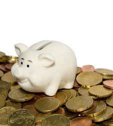 Free Piggy Bank Savings Stock Photo - 18261270