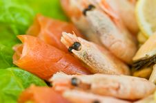 Free Seafood Stock Photography - 18262032