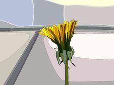 Free Dandelion Stock Images - 18263664
