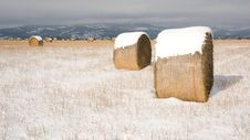 Free Rolled Hay In The Field Fresh Farm Snow Royalty Free Stock Image - 18264236