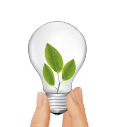 Free Plant Inside Light Bulb In Hand. Vector Royalty Free Stock Images - 18264799