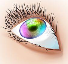 Free Multicolor Human Eye. Stock Photos - 18266093