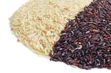 Free Brown And Black Indica Rice, Side View Stock Photos - 18272063