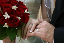 Free Bride And Groom S Hands Royalty Free Stock Photo - 18274265