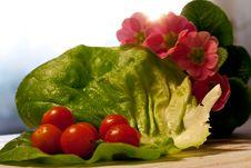 Free Crispy Salad Royalty Free Stock Images - 18274369
