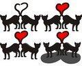 Free Black Cats Royalty Free Stock Photo - 18289135