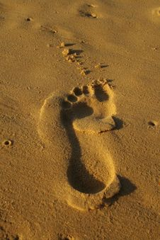 Free Footprint In The Sand Royalty Free Stock Image - 18280636