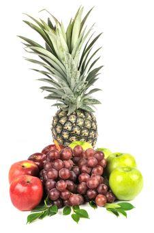 Free Fruits Stock Photo - 18281160