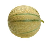 Free Melon Cantaloupe, Isolated Royalty Free Stock Photos - 18282478