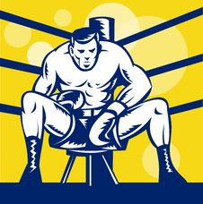 Free Boxer Sitting On Stool Front Royalty Free Stock Photography - 18283067