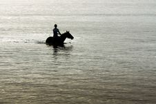 Free Silhouette Of Horse And Rider In Ocean. Royalty Free Stock Photo - 18284945