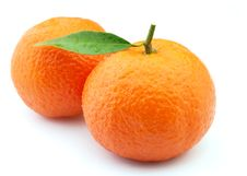 Free Tangerines In Water Droplets Royalty Free Stock Image - 18285516